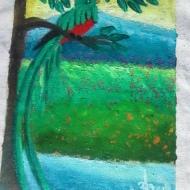 Quetzal Series 1